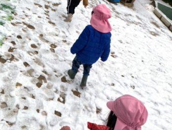 雪踏み〈2歳児〉 令和3(2021)年1月12日