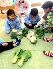 野菜を覚えよう!〈1歳児〉 令和3(2021)年2月17日