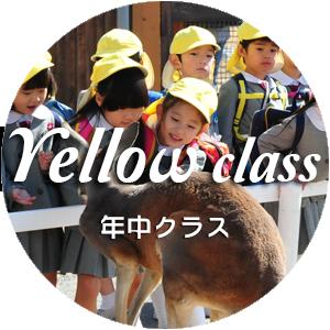 Yellow(年中クラス)のイメージ